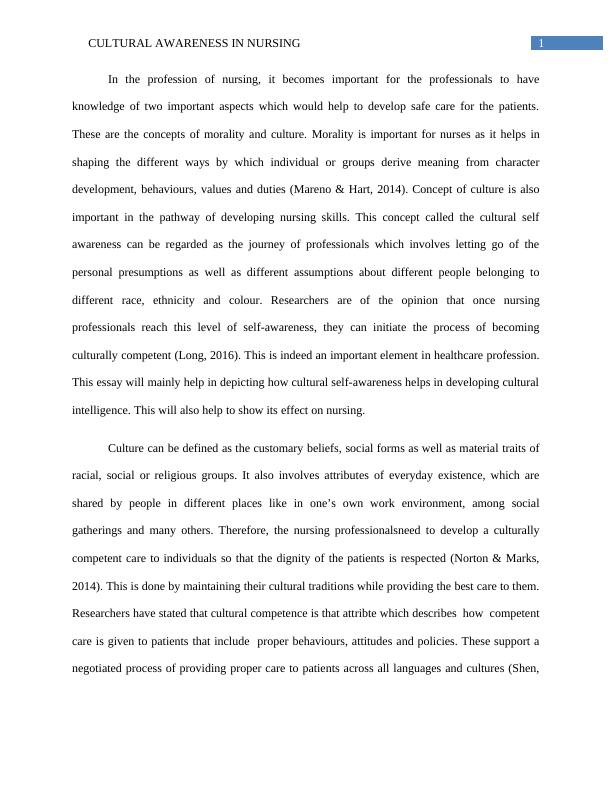 Essay on Cultural Awareness in Nursing