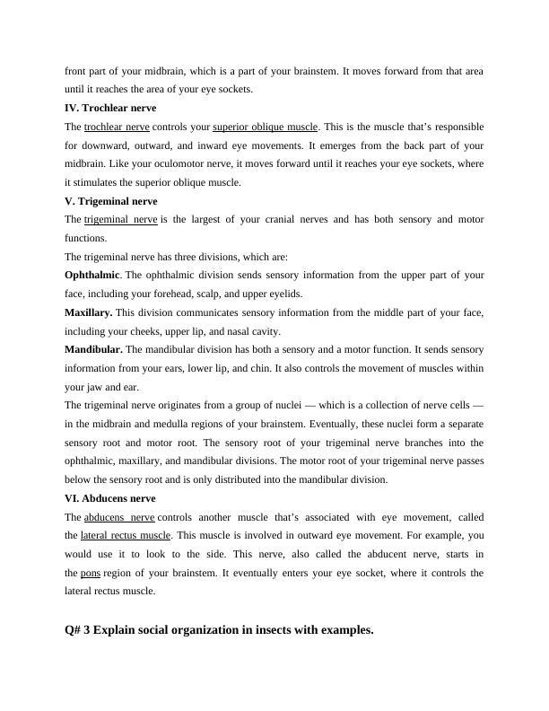 cranial nerves Assignment PDF